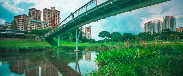 HDB more expensive for a decade